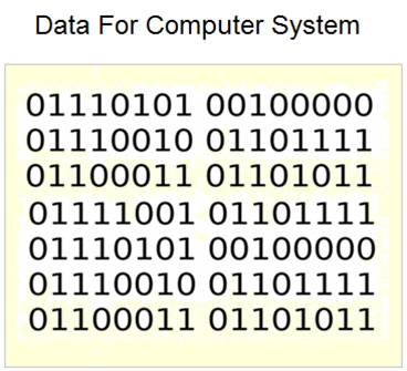 Data For Computer System