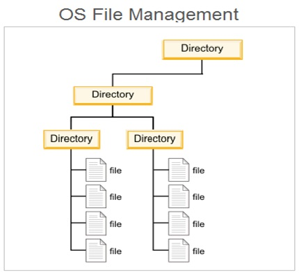 File Management Logical View