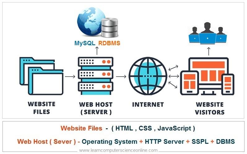 What Is A Website , Full Stack Developer