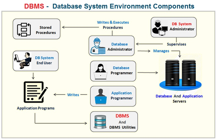DBMS Environment Components