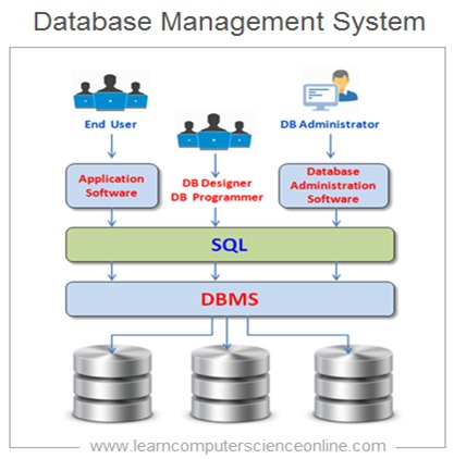How Database System Works