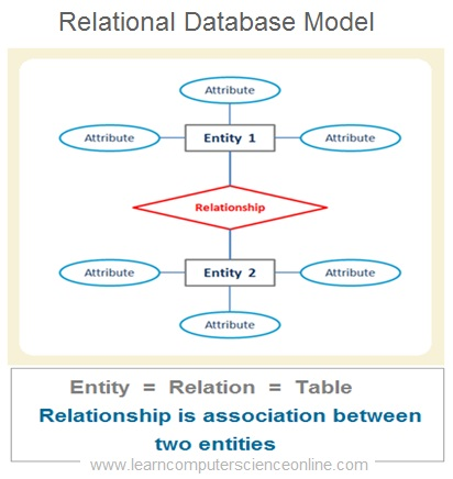 Database Entity And Attribute