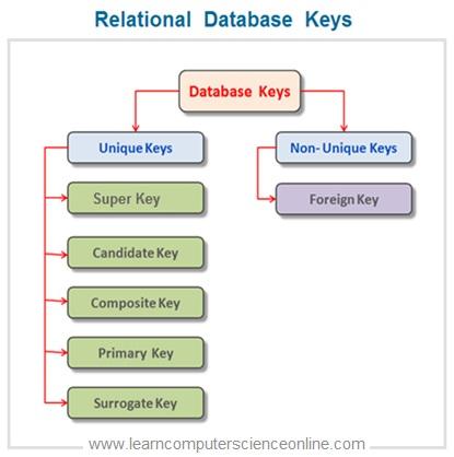Database Keys Types