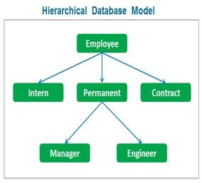 Hierarchical Database Model , Database Management System