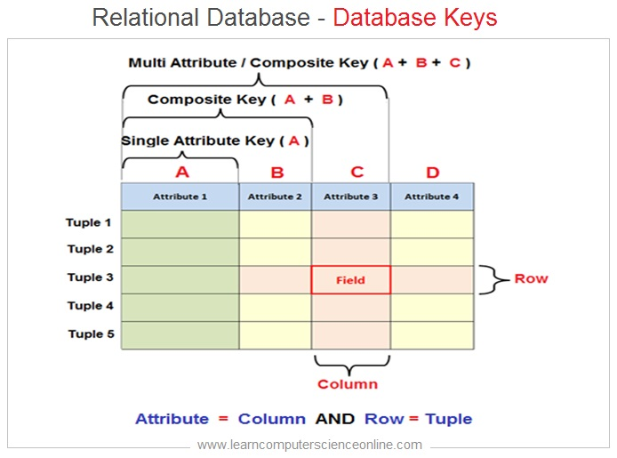 Relational Database Keys , Database Keys , Primary Key , Foreign Key