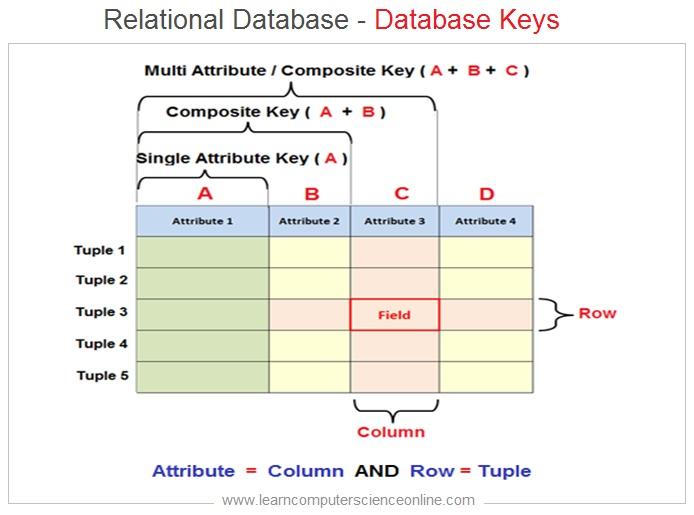Relational Database Keys , Database Keys , Primary Key , Foreign Key