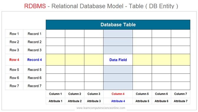 Relational Database Table , Database Management System , RDBMS