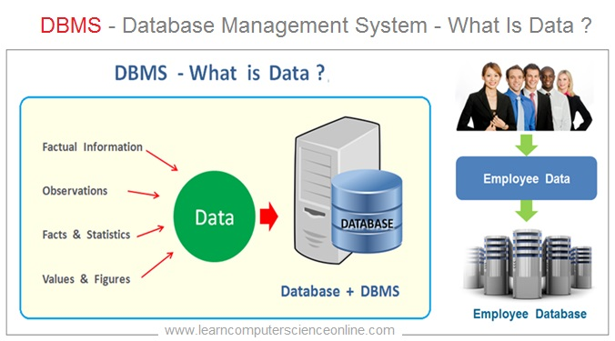 What Is Data , DBMS