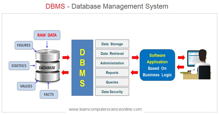 What Is Database Management System , Database Management System