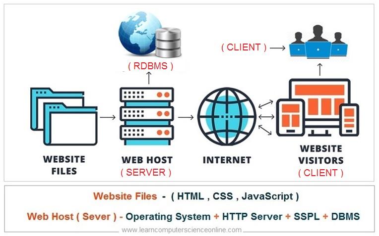 Website Design ,Full Stack Developer , Web Application Architecture