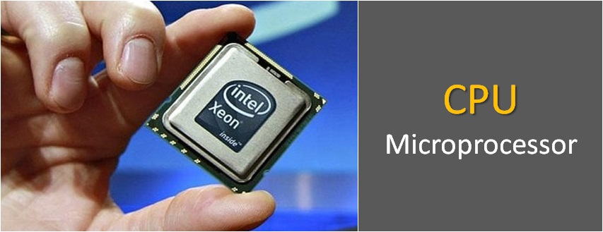 What Is CPU