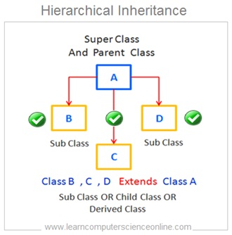 Hierarchical Inheritance , Java Programming Basics