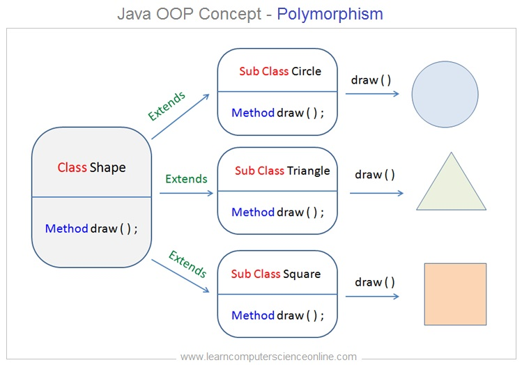 Polymorphism In Java , Java Programming Basics