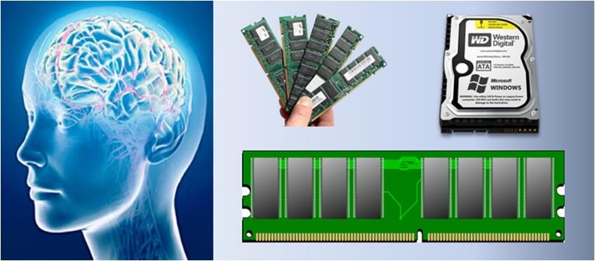 What Is Virtual Memory , Memory Management