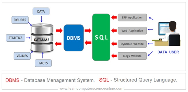 What Is Data And Database In DBMS