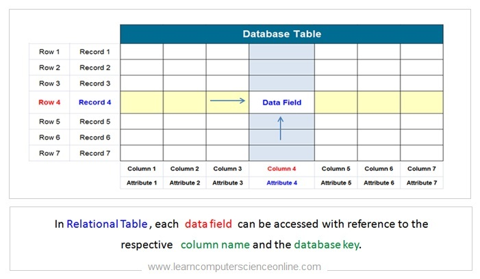 Database Keys In DBMS