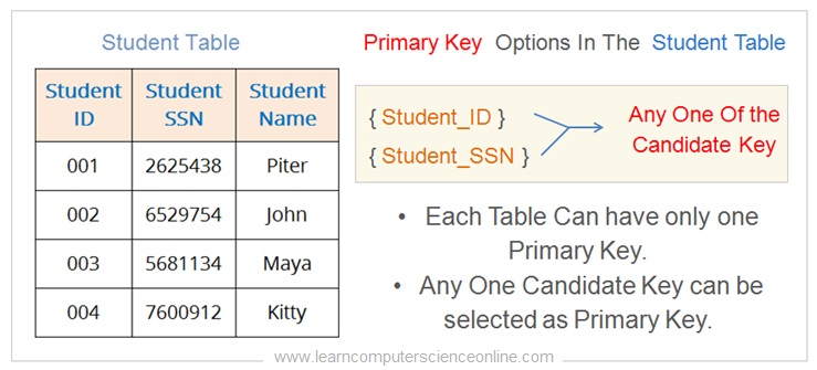 What Is Primary Key