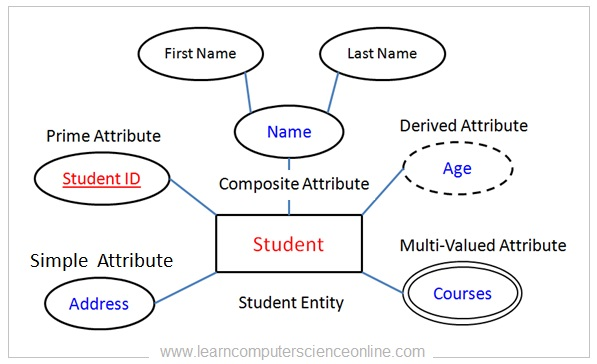 Types Of Attributes In DBMS , Entity Relationship Diagram