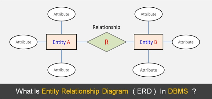 What Is Entity Relationship Diagram In DBMS