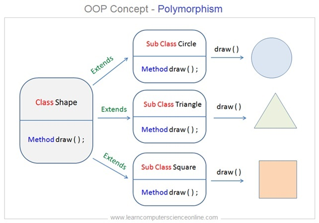 What Is Polymorphism In OOP